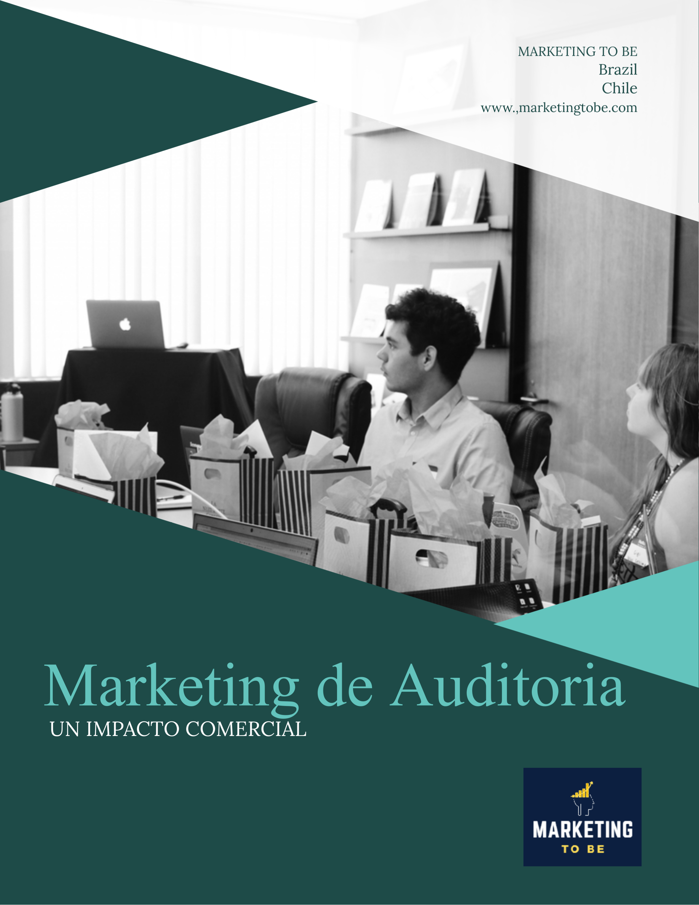 Marketing de Auditoria, un Impacto Comercial